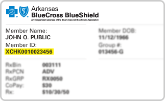 Individual family open enrollment arkansas blue cross and blue please wait malvernweather Images